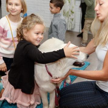 Обучающий курс «Собака — друг человека»