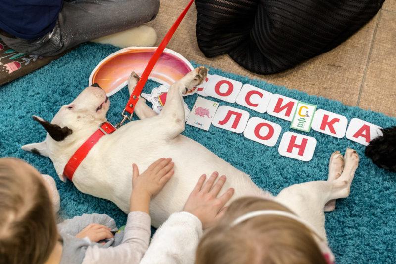Занятия с собаками-терапевтами и детьми с нарушениями в развитии