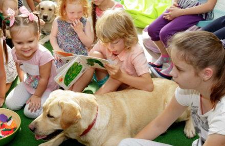 Развивающие занятия с собаками-терапевтами